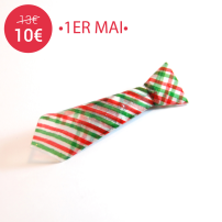 FAS1325a-broche-origami-cravate-rayures-rouge-vert-fraisesauscre10